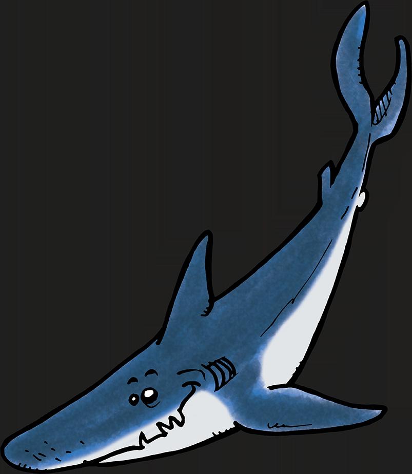 Requin Ocean academy