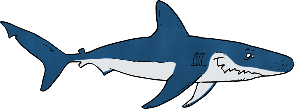 Requin d'Ocean academy