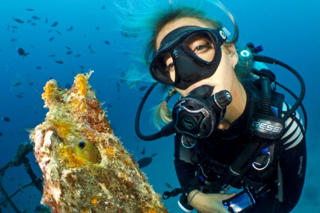 charte du super plongeur - Ocean academy