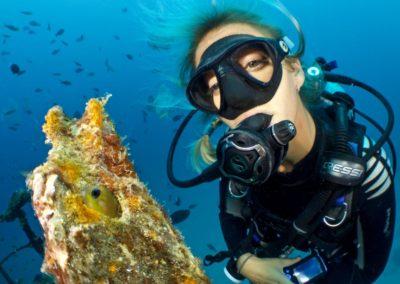 Charte Junior du super plongeur