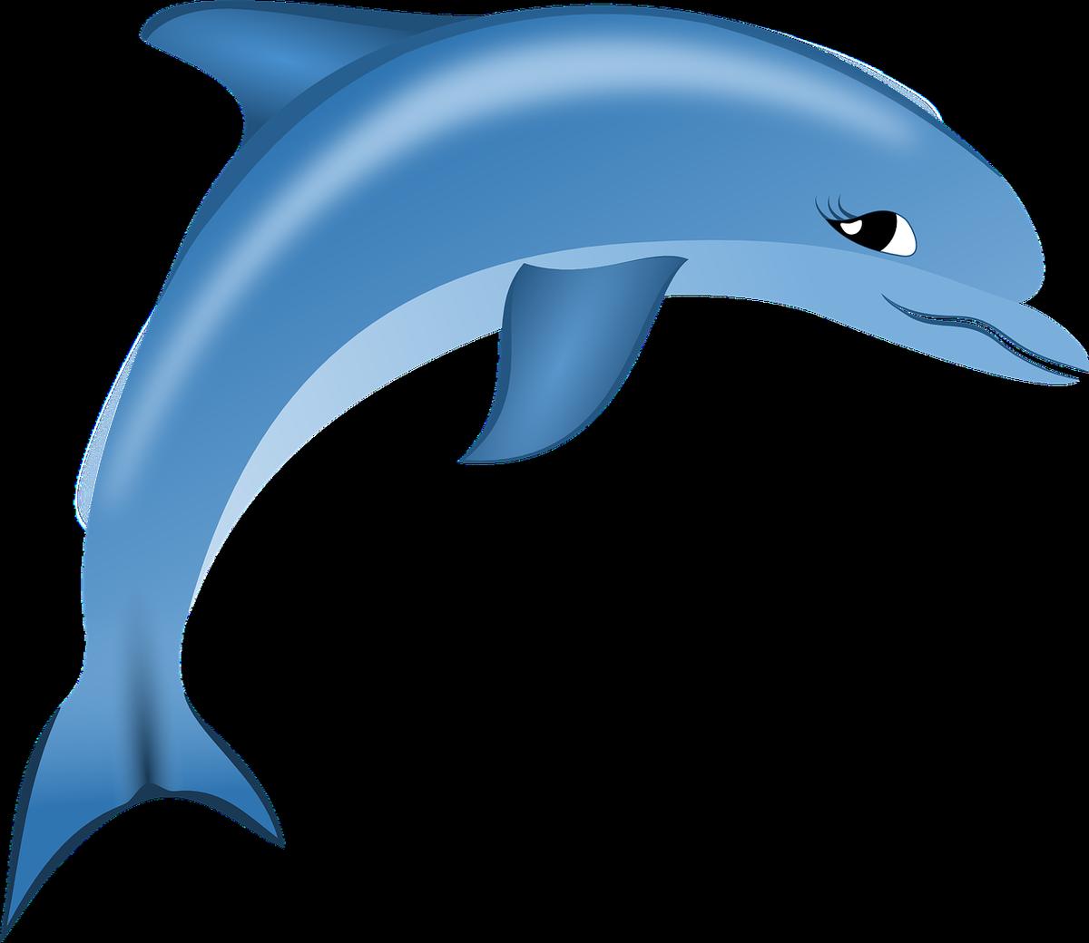 dauphin sauteur