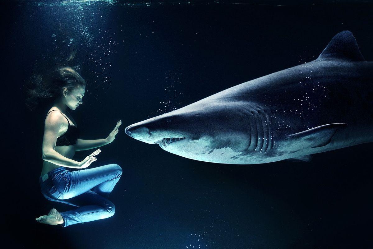 Requin avec femme